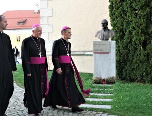 Umestitev novega novomeškega škofa dr. Andreja Sajeta