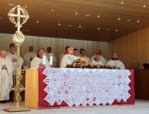 Duh Assisija
