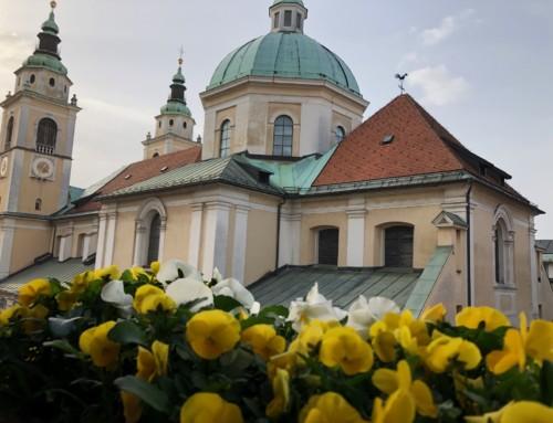 Nagovor nadškofa Zoreta na 6. postno, cvetno nedeljo